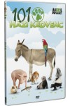 101 Házi kedvenc (DVD) *