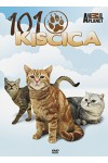 101 kiscica (DVD)