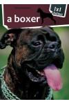 A boxer (1x1 kalauz)