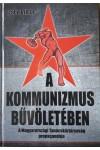 A kommunizmus bűvöletében - A Magyarországi Tanácsköztársaság propagandája