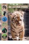 Állatkölykök - képekkel a világ körül