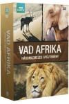 BBC Vad Afrika (díszdoboz) (2 DVD)