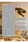 Dinoszauruszok (Nagykönyv Kiadó)