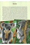 Emlősállatok a világ körül