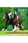 Lovak (két lovas kép) - Képes falinaptár 2019