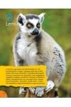 100 érdekesség állatokról