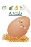 A tojás (Kis felfedező zsebkönyvek 34.)