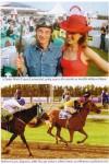 Zsokékrul - A lóverseny regénye