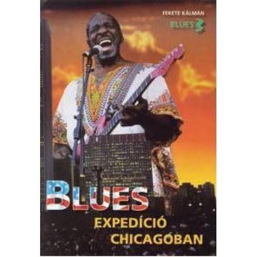 Blues expedíció Chicagóban
