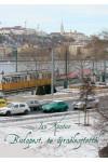Budapest, te újraélesztettél *