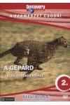 A természet csodái 02.: A gepárd - A leggyorsabb vadász (DVD)