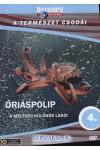 A természet csodái 04.: Óriáspolip - A mélység különös lakói (DVD)