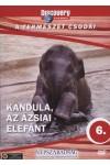 A természet csodái 06.: Kandula, az ázsiai elefánt (DVD)