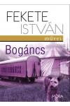 Bogáncs (keménytáblás)