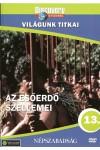 Világunk titkai 13.: Az esőerdő szellemei (DVD)