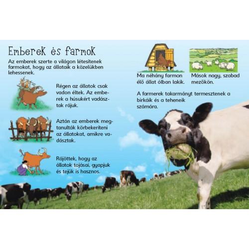 Farmon élő állatok angolul