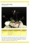 Otthonunk növényei 13. - Sziklakertbe való évelő virágok
