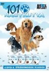101 Nagykutya 4 DVD-s díszdobozos kiadás