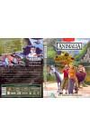 Animalia - Az állatok birodalma 3. (DVD)