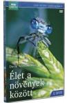 BBC - Élet a növények közt 1. (DVD)