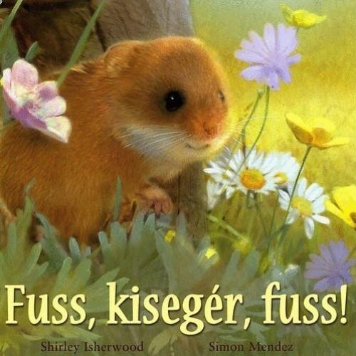 Fuss, kisegér, fuss!