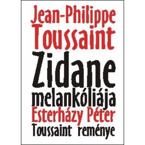 Zidane melankóliája - Toussaint reménye