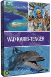 BBC Earth - Vad Karib-tenger díszdoboz (DVD)