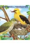 Körforgás a természetben - az állatok és a növények életciklusairól