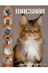 Macskák - képekkel a világ körül