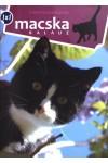 Macskakalauz (1x1 kalauz)