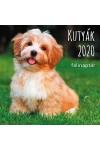 Kutyák - Képes falinaptár (nagy) 2020