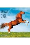 Lovak - Képes falinaptár (nagy) 2020