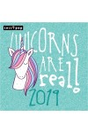 Unicorns are real! - Képes falinaptár 2019
