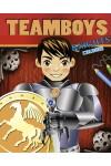 TeamBoys Colour - Knights (kifestő)