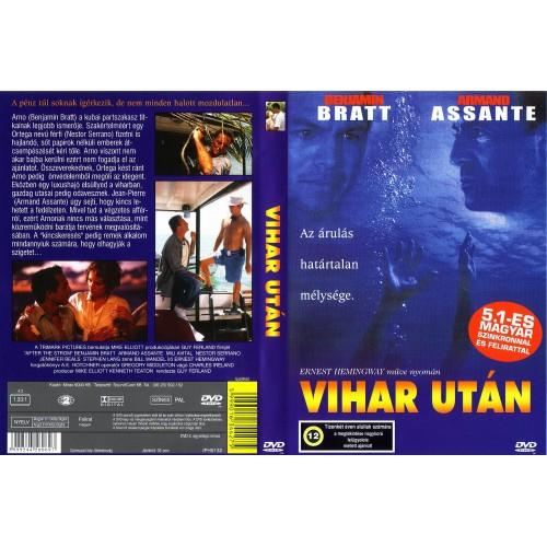 Vihar után (DVD) *